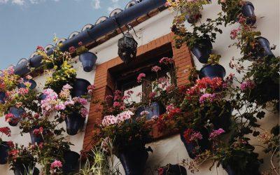 Disfruta de nuestro Tour Completo por Córdoba